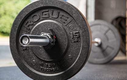 Compatible with Most Standard Bumper Plates