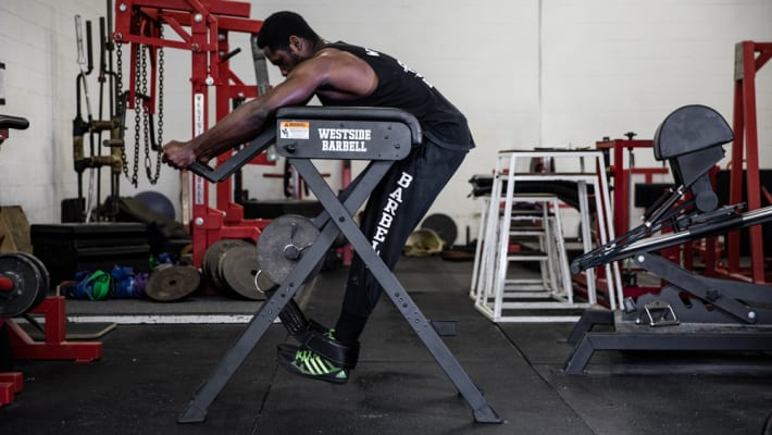 catalog/Strength Equipment/Strength Training/Lower Body Training/WESTSIDEGROUP/WESTSIDEGROUP-WEB5_omldrs